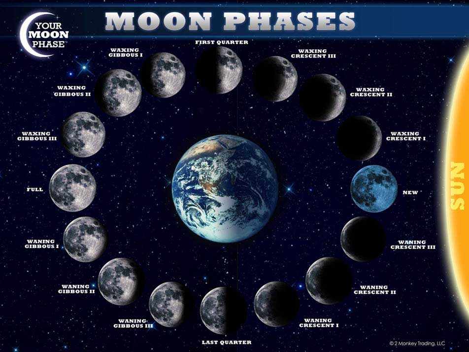 moon-phase-chart