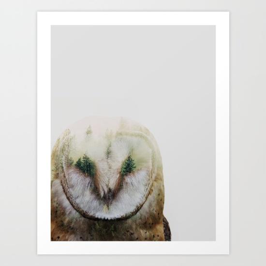 in-the-mist-qk7-prints